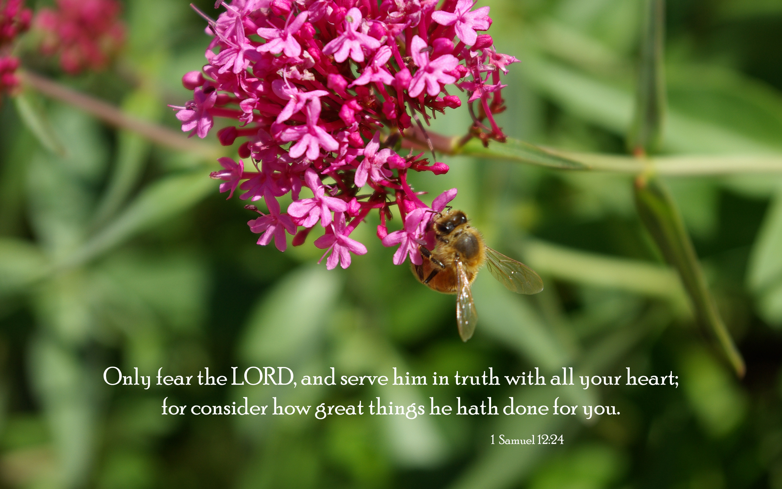 Bible &amp- Nature Desktop Backgrounds - Powerful and Uplifting from ...