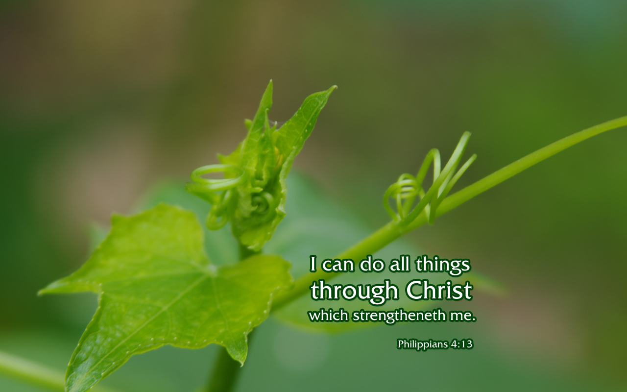 Philippians 413 Free Nature Bible Desktop Background Wallpaper