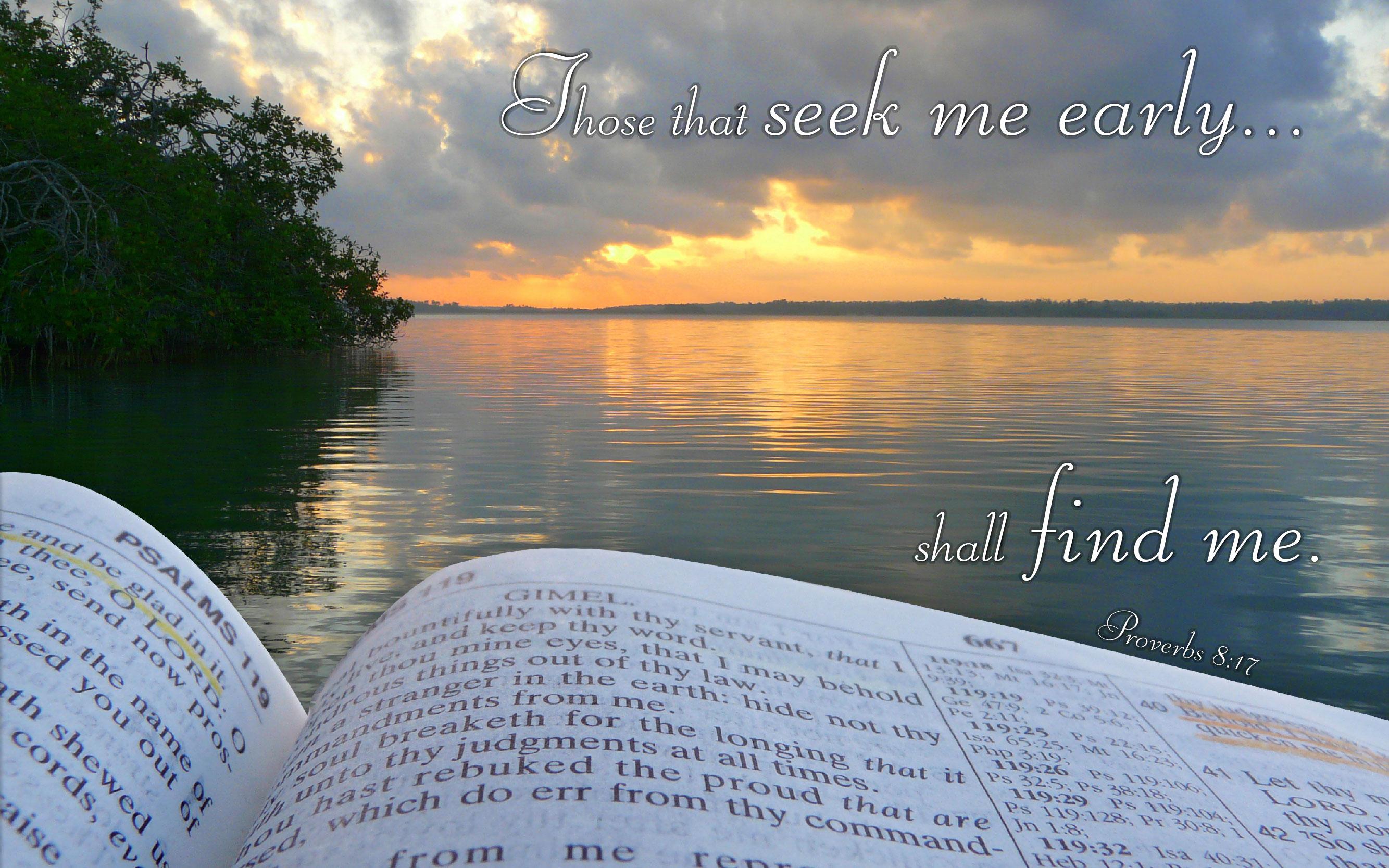 proverbs 8:17 - free nature & bible desktop background / wallpaper