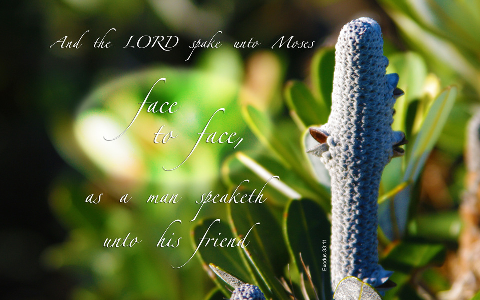 Free Nature & Bible Desktop Background