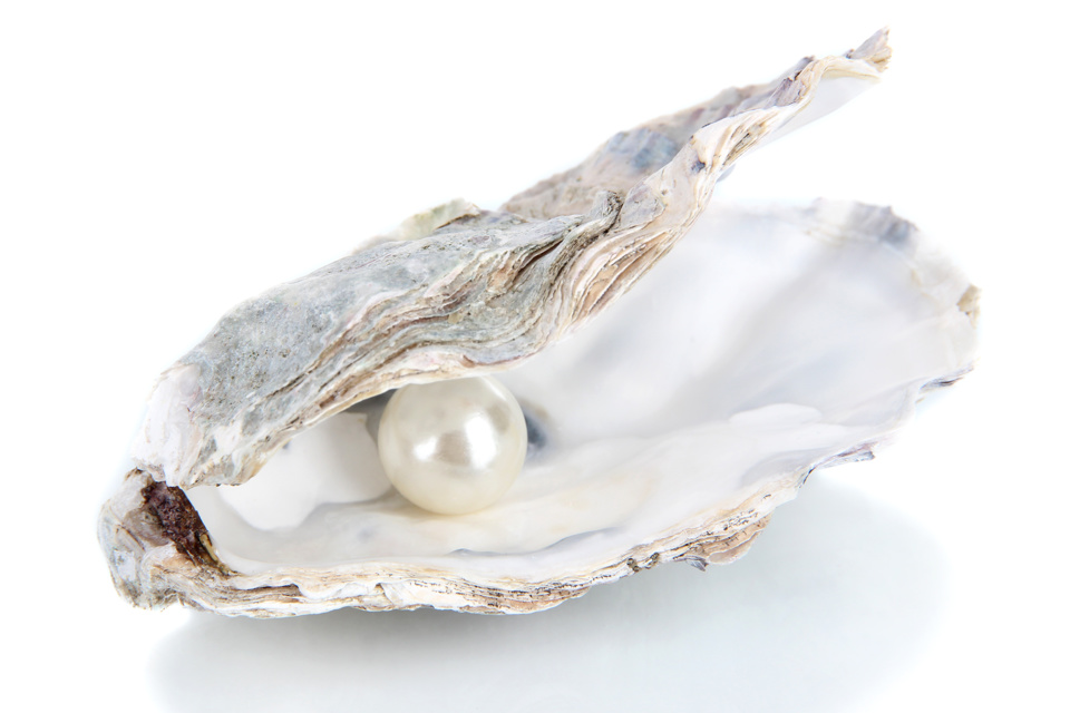 The Oyster - Poem